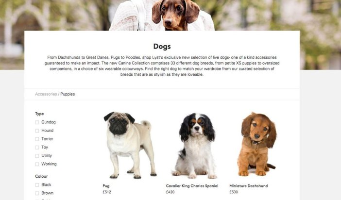 'Canine Collection' Lyst - Best PR Stunt Ideas - Stylight Blog
