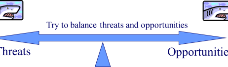 risk-management-balancing-threats-and-opportunities