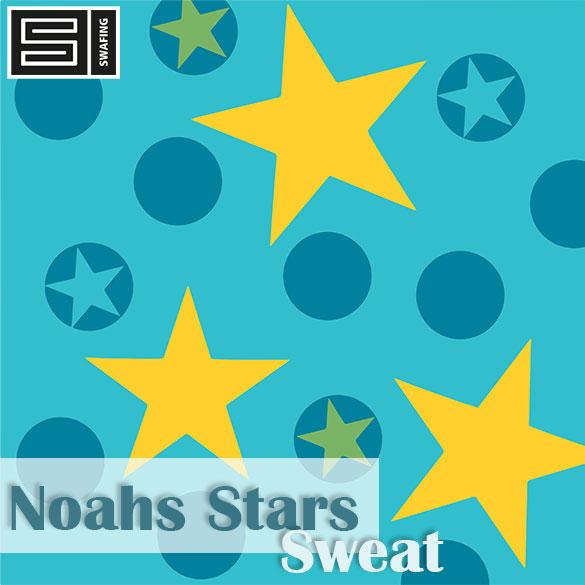 noahsstar_sweat