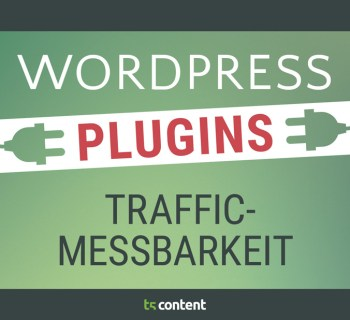 Traffic messbar machen – WordPress