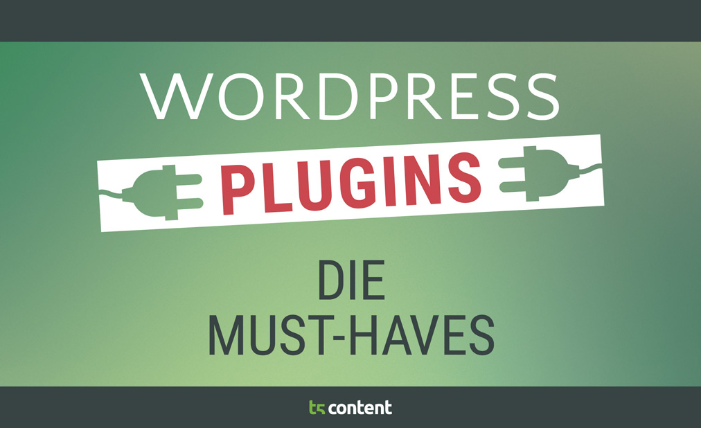 Das Must-have unter den WordPress Plugins
