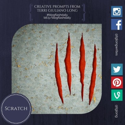 #BlogFlashDaily: Scratch