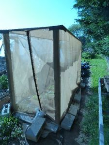 Pollination Cage for seed production of strawberries