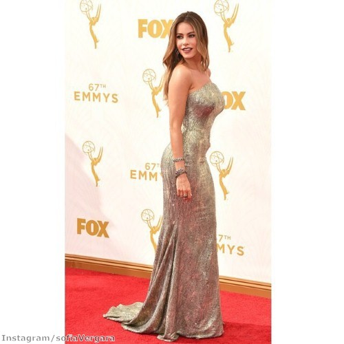 Sofia showcased her curvs in stunning silver at the Emmys