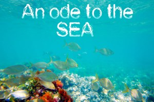 AN-ODE-TO-THE-SEA-for-blog
