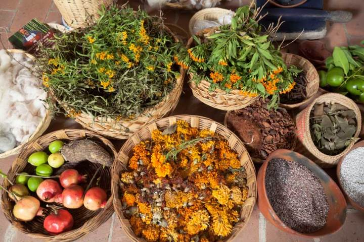 Sources of natural dyes