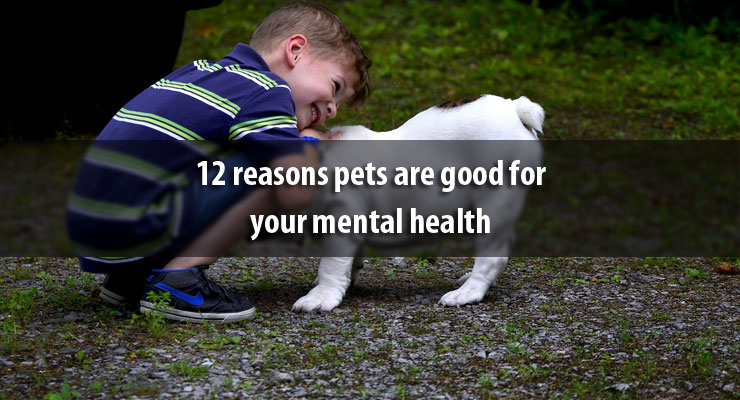 12 reasons pets are good for your mental health