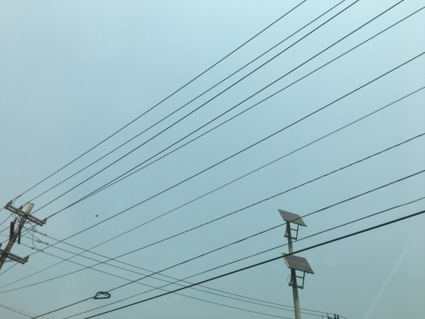 A lone Blue Angel flying southward visible between overhead power lines.