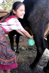 Sponsored child in Guatemala
