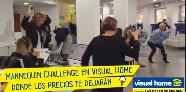 mannequin challenge en visual home