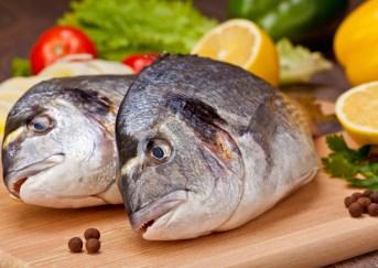 fish-closeup