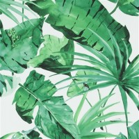 Tropical Natural Green And White Leaves Wallpaper R4191