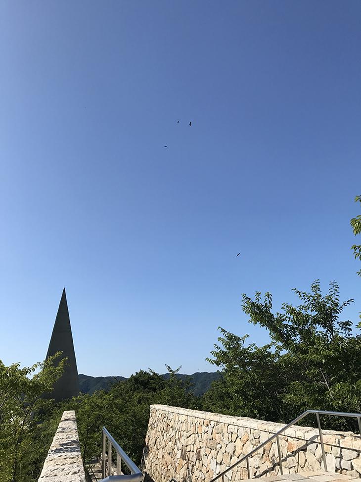 空が真っ青。記念塔とトンビ