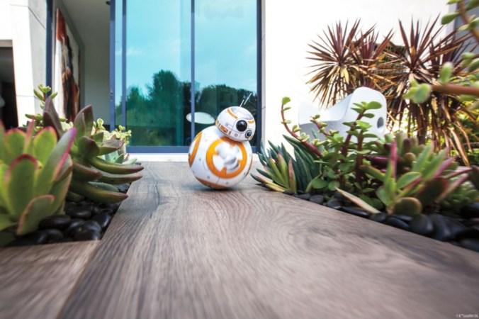 BB-8™ en mouvement