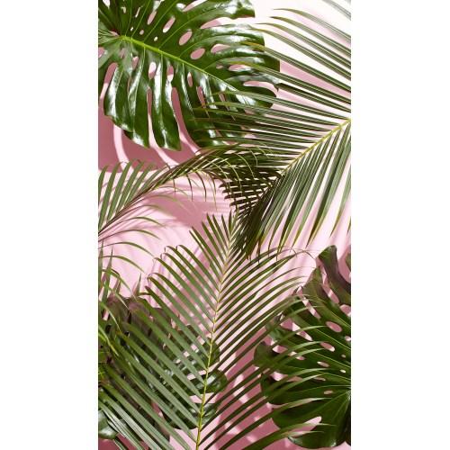 ... Medium Crop Of Palm Tree Wallpaper ...