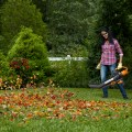 Blowing Leaves with Worx TRIVAC