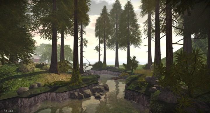 The woodand