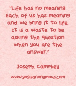 Life-has-no-meaning-Each