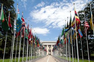512px-United_Nations_Flags_-_cropped