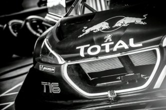 Photo  Peugeot 208 T16 Pikes Peak : Loeb Machine  (vidéo)