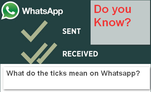 What do the ticks mean on Whatsapp exactly
