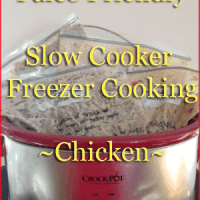Paleo Slow Cooker Freezer Meals