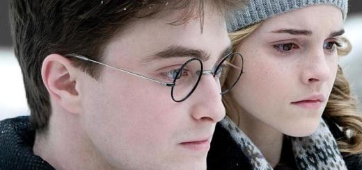 Harry Potter y Hermione Granger