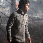 Harry Potter y las Reliquias de la Muerte Película