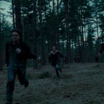 Harry-Potter-and-The-Deathly-Hallows-Cap--00271