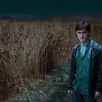 Harry Potter_Deathly_Hallows_Trailer_20