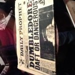 Harry Potter BlogHogwarts Expo Mexico (56)