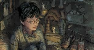 Harry Potter BlogHogwarts Video Ilustrada