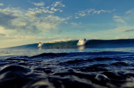 Fotos Surf