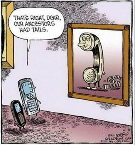 "Cellphone: ""That's right, dead, our ancestors had tails."""