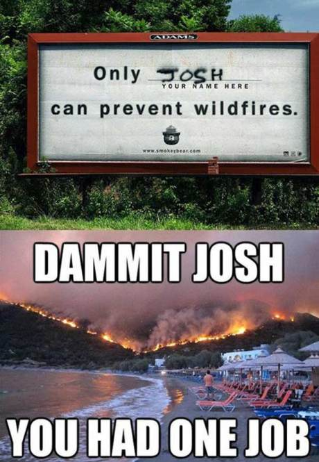 """Only ________ ('Your Name Here', 'Josh' painted in grafitti) Can Prevent Wildfires.""  DAMMIT, JOSH!  You had ONE JOB!"
