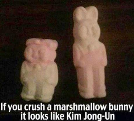 If ou crush a marshmallow bunny it looks like Kim Jong Un