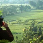 ufo sleman crop circle