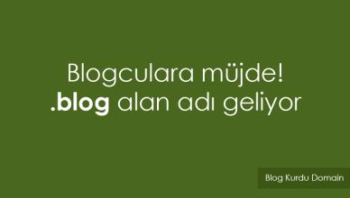 blog domain