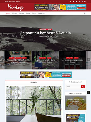 theme-wordpress-pro-creer-blog-super-affilie-argent-rentable-professionnel-prix