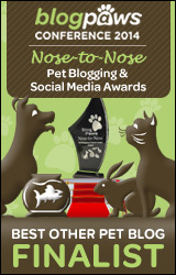 BlogPaws 2014 Nose-to-Nose Awards Finalist badge