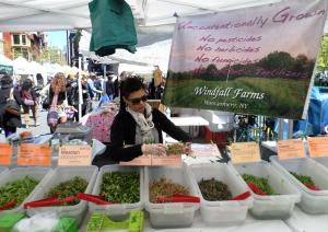 The Union Square Greenmarket operates on Mondays, Wednesdays, Fridays and Saturdays. Photo by Emily Murphy