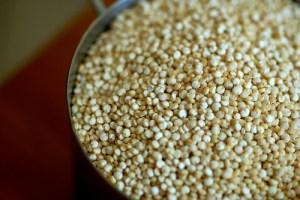funiber quinoa