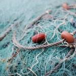 Certificación de sustentabilidad indica pescas más ecológicas