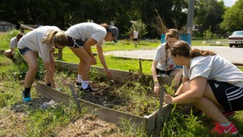 students dig in garden