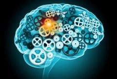 brain_gears_shutterstock_wordpress