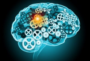 brain_gears_shutterstock_wordpress
