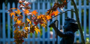 Autumnal season arrives in Peoria