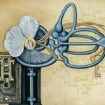 Auriculuar Apparatus, Original Oil by Michelle Anderst