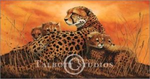 Cheetahs at Sunset, original oil painting by Eugenia Talbott