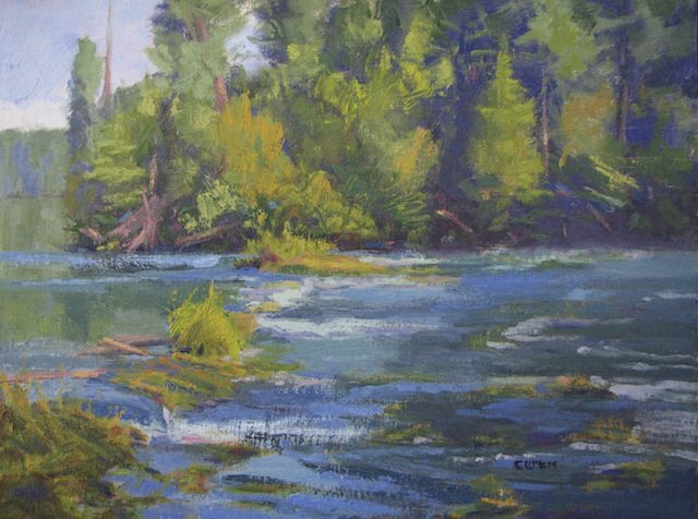 """Rogue Riffles, Plein Air Landscape Oil Painting by Linda Curtis, Shady Cove, Oregon Whitewater rafting and traveling with husband and dogs fuels her inspiration. You can find her on a river bank, in a field, or by the edge of a marsh.  """"Being out in nature allows me to study the nuances needed to convey my interpretation of the scene."""" ~ Linda Curtis"""